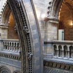 a photograph of gargoyles and arches in the balcony of the Natural History Museum in London
