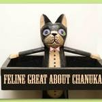 Chanukah Cat
