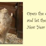 New Year Open Door