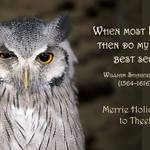 photo of an owl and a quote from Shakespeare about winking and seeing