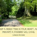 landscape with Chinese proverb: Keep a green tree in your heart, and perhaps a songbird will come.