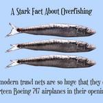 Stark Facts