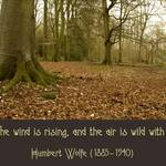 The Air Is Wild  HUMBERT WOLFE: Listen! The wind is rising and the air is wild with leaves...