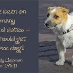 Free Dog