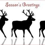 Reindeer in a line with text 'Season's Greetings'