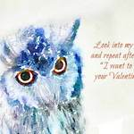 Owl with text 'Look deep into my eyes and repeat after me 'I want to be your Valentine'