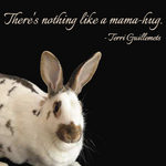 Rabbit with quote by Terri Guillemets - There's nothing like a mama hug