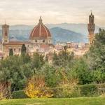 A view of Florence from Palazzo Pitti