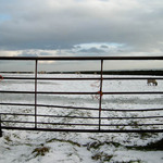 photo of a metal gate in a stone wall in the snow in the Yorkshire Dales