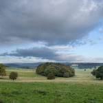 trees and fields in the Yorkshire Dales with lowering sky