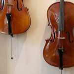 photo of two cellos