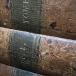 photo of the spines of two old, leather bound volumes