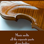 photo of a violin with a quote by Anais Nin that Music melts all the separate parts of our bodies together.